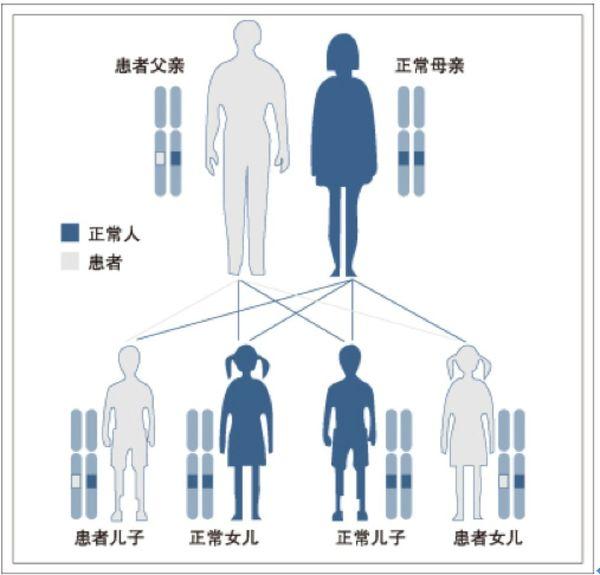 遗传病类型_遗传病的类型 - 微医(挂号网)